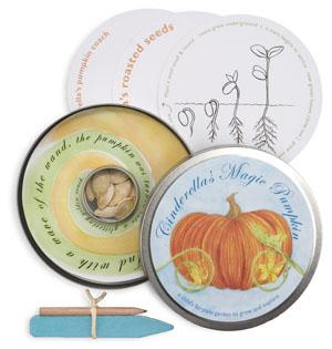 cinderella magic pumpkin