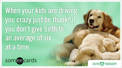 puppies-kids-parent-mom-cute-therapy-ecards-someecards