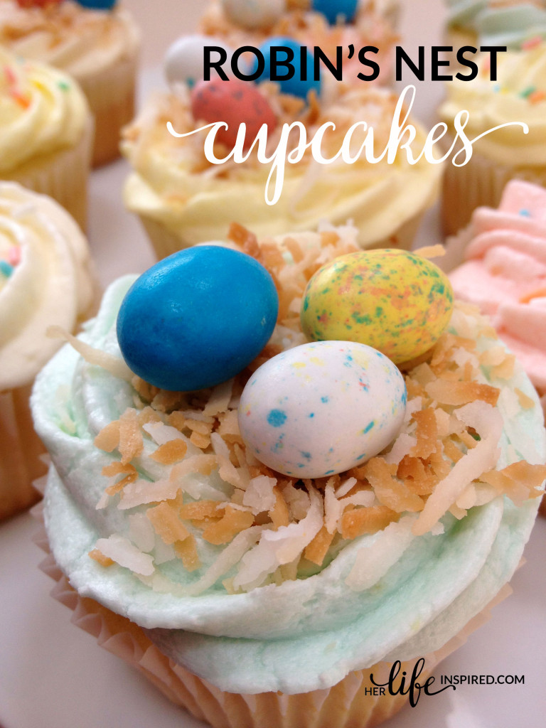 robins-nest-cupcakes-spring-aster-dessert