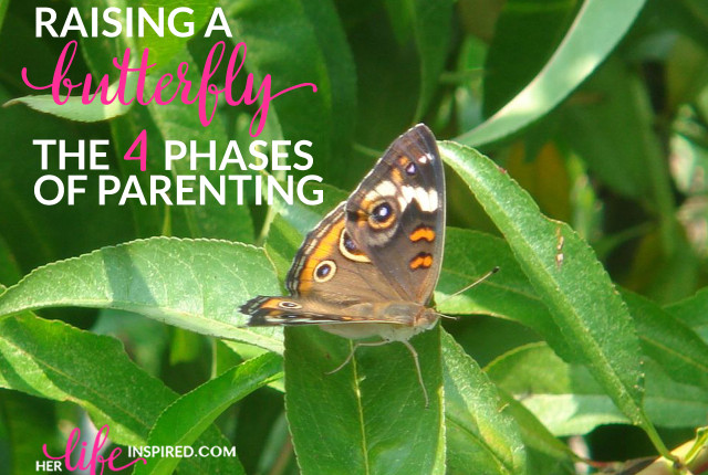 Raising A Buterfly The 4 Phases Of Parenting